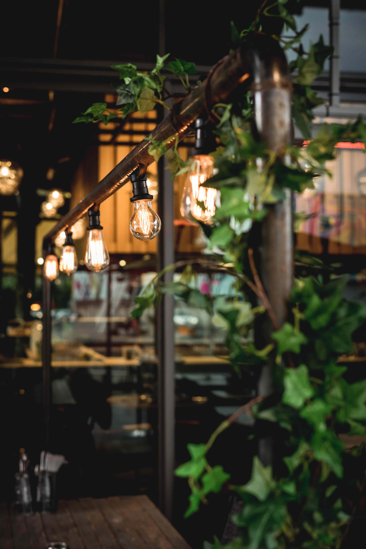 ristorazione sostenibile, consulenza