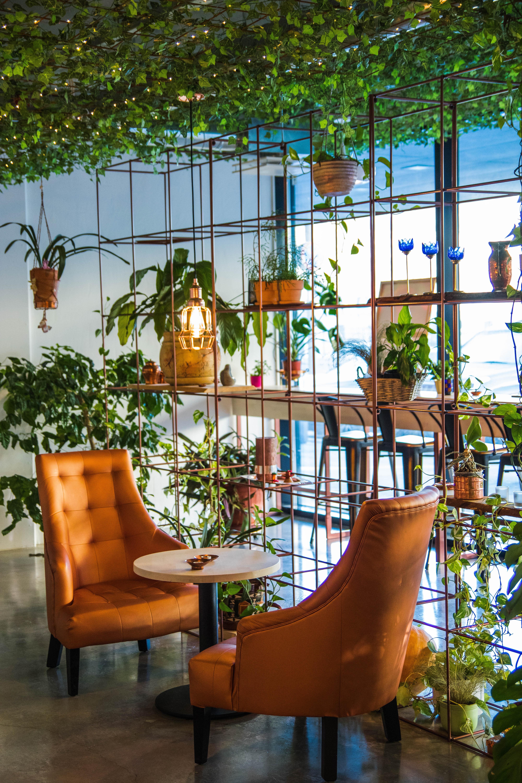 interior-design-per-ristoranti-1